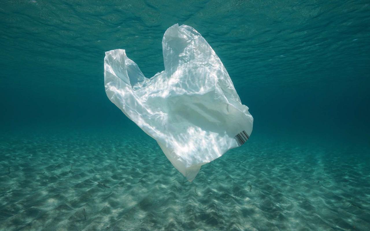 À partir du 1er janvier 2020 : interdiction des produits en plastique à usage unique, ce qu'il faut savoir